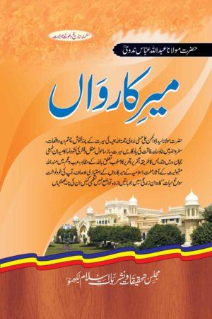 Meer-e-Karwan - میرکارواں
